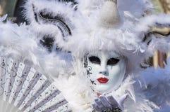 Ritratto di carnevale di Venezia Immagini Stock