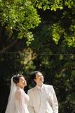 Ritratto di cerimonia nuziale Fotografia Stock