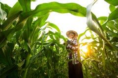 Ritratto di giovane agricoltore che sta nell'azienda agricola media del cereale e che sorride alla macchina fotografica Fotografie Stock Libere da Diritti
