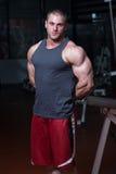 Ritratto di giovane culturista muscolare fisicamente misura fotografie stock