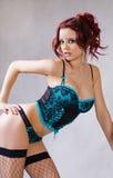 Ritratto di giovane donna sexy Immagine Stock