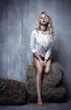 Ritratto di giovane ragazza sessuale che si siede sul fieno, sul textura immagini stock libere da diritti