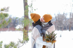 Ritratto di giovani coppie che sorridono e che abbracciano i baci nell'inverno sopra fotografia stock libera da diritti