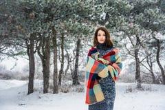 Ritratto di inverno della ragazza affascinante Fotografia Stock