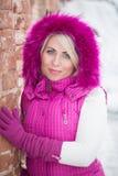 Ritratto di inverno della ragazza sexy Immagini Stock Libere da Diritti