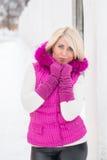 Ritratto di inverno della ragazza sexy Fotografia Stock