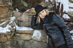 Ritratto di inverno di una donna Fotografia Stock