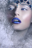 Ritratto di inverno Regina della neve, ritratto creativo del primo piano Giovane donna nell'immagine creativa con trucco artistic Immagini Stock Libere da Diritti
