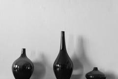 Ritratto di natura morta dei vasi Fotografie Stock