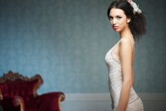 Ritratto di paesaggio di bella sposa Immagine Stock Libera da Diritti