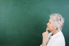 Ritratto di profilo di una donna senior premurosa Fotografia Stock