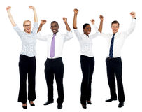 Ritratto di riuscito gruppo di affari felice Fotografia Stock Libera da Diritti