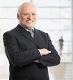 Ritratto di riuscito uomo d'affari Immagini Stock Libere da Diritti