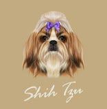 Ritratto di Shih Tzu Dog Illustrazione di vettore Fotografia Stock