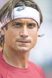 Ritratto di Spains David Ferrer durante il Davis Cup 2012. 1/4 di Fina Fotografia Stock
