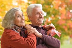 Ritratto di un abbracciare senior felice delle coppie Immagini Stock