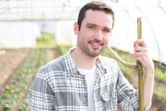 Ritratto di un agricoltore attraente in una serra Fotografia Stock Libera da Diritti