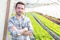 Ritratto di un agricoltore attraente in una serra Immagine Stock Libera da Diritti