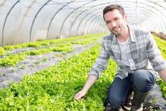 Ritratto di un agricoltore attraente in una serra Fotografie Stock Libere da Diritti