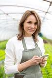 Ritratto di un agricoltore attraente in una serra facendo uso del cellulare Fotografia Stock