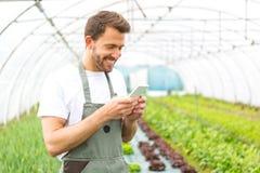 Ritratto di un agricoltore attraente in una serra facendo uso del cellulare Immagini Stock