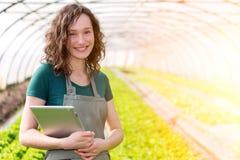 Ritratto di un agricoltore attraente in una serra facendo uso della compressa Fotografia Stock