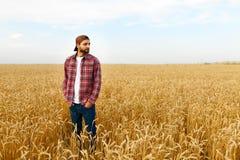 Ritratto di un agricoltore barbuto che sta in un giacimento di grano Uomo dei pantaloni a vita bassa di Stilish con il cappello d Immagine Stock Libera da Diritti