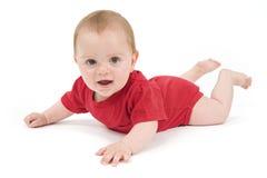 Ritratto di un colore rosso del bambino di sei mesi Fotografie Stock