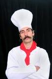 Ritratto di un cuoco unico maggiore Immagini Stock