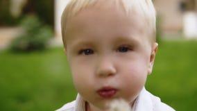 Ritratto di un dente di leone di salto del bello ragazzo biondo Affrontando alla macchina fotografica Bbackground vago dell'erba  archivi video