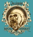 Scimmia reale Fotografia Stock