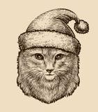 Ritratto di un gatto lanuginoso sveglio in un cappello di Natale Illustrazione d'annata di vettore di schizzo illustrazione vettoriale