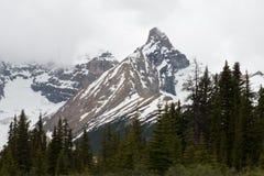 Ritratto di un ghiacciaio canadese in diaspro Fotografia Stock