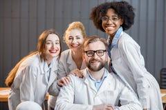 Ritratto di un gruppo di erba medica Fotografia Stock Libera da Diritti