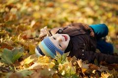 Ritratto di un pantano allegro del ragazzino nel fogliame di caduta Immagini Stock