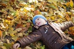 Ritratto di un pantano allegro del ragazzino nel fogliame di caduta Fotografie Stock Libere da Diritti