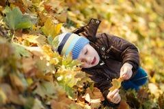 Ritratto di un pantano allegro del ragazzino nel fogliame di caduta Fotografie Stock