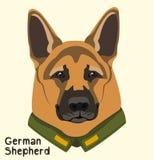 Ritratto di un pastore tedesco della razza del cane nel rivestimento militare Fotografia Stock