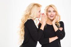 Ritratto di un pettegolezzo felice dei gemelli delle sorelle Fotografie Stock Libere da Diritti