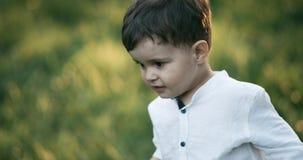 Ritratto di un ragazzo di 2 anni Ha camminato attraverso il parco Movimento lento stock footage