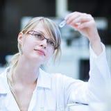 Ritratto di un ricercatore/allievo femminili di chimica Fotografia Stock Libera da Diritti
