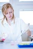 Ritratto di un ricercatore femminile Fotografia Stock