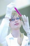 Ritratto di un ricercatore femminile che effettua ricerca Immagini Stock Libere da Diritti