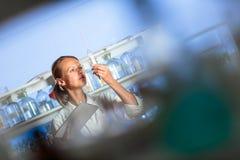 Ritratto di un ricercatore femminile che effettua ricerca in un laboratorio Fotografie Stock Libere da Diritti