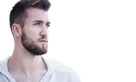 Ritratto di un uomo attraente con la barba Immagine Stock Libera da Diritti
