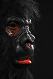 Ritratto di un uomo con il costume della gorilla Fotografia Stock