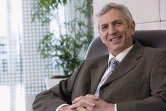Ritratto di un uomo d'affari maturo immagine stock libera da diritti