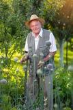 Ritratto di un uomo senior che esamina macchina fotografica in orto Immagini Stock