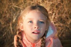 Ritratto di una bambina con gli occhi azzurri e le trecce immagine stock libera da diritti