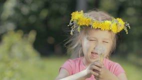 Ritratto di una bambina divertente nel legno Un bambino senza denti anteriori soffia sui denti di leone asciutti e sulle risate,  archivi video